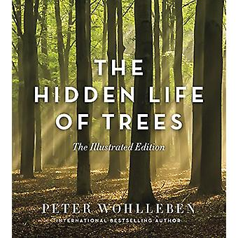 The Hidden Life of Trees - The Illustrated Edition by Peter Wohlleben