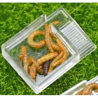 Acryl Food Feeder Area For Insect
