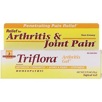 Boericke & Tafel, Triflora Arthritis Gel, 2.75 oz (78 g)