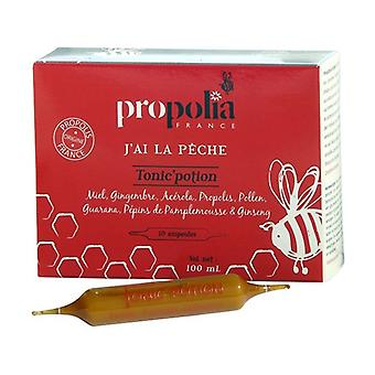 Tonic and potion propolis, honey, ginger, acerela and pollen 10 bulbs