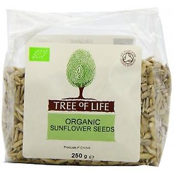 Tree Of Life - Sunflower - Seeds 250G X 6