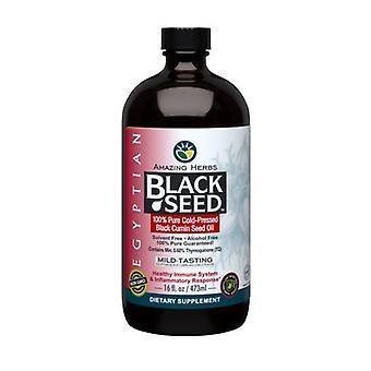 Amazing Herbs Egyptian Black Seed Oil, 16 oz