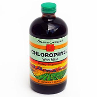برنارد جنسن منتجات الكلوروفيرل، السائل الطبيعي، 8 OZ