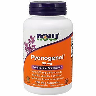 الآن الأطعمة Pycnogenol، 30 ملغ، 150 قبعات
