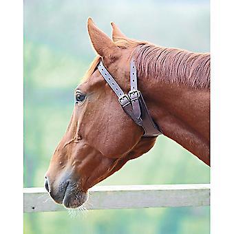 Coleira de cavalo anti-berço de couro de Shires