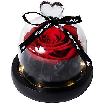 Natürliche ewige Rose mit LED-Lichtern Ewige rote Blume in Glaskuppel auf Kiefernbasis für Valentinstag Geburtstag Muttertag Geburtstag Weddin