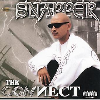 Snapper - ansluta [CD] USA import