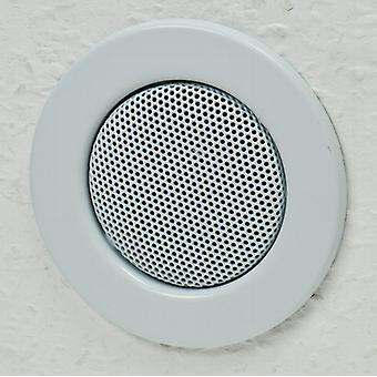 Ceiling - mounting speaker