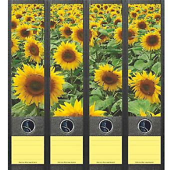 Spine Label Field Sunflowers
