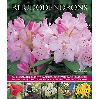 Rhododendrons: An Illustrated Guide to variétés, de culture et de soins, avec des Instructions étape par étape et plus...