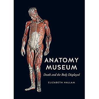 Anatomie-Museum