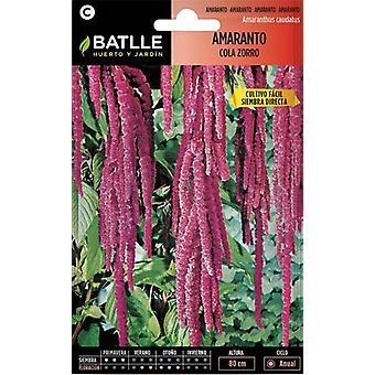 Batlle Amaranthe Fox Tail (Garden , Gardening , Seeds)