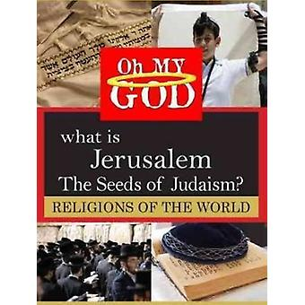 What Is Jerusalem - Seeds of Judaism [DVD] USA import