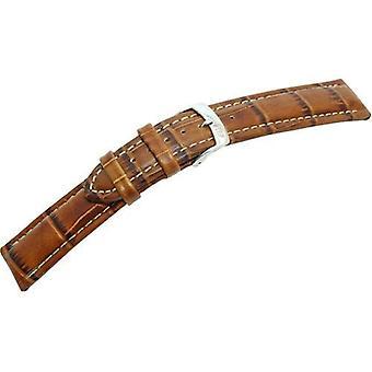 """حزام من الجلد الأسود Morellato 20 مم A01U3252480041CR20 """"براون بالإضافة إلى"""" رجل"""