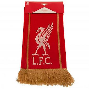 Liverpool FC Premier League Champions Winter Scarf