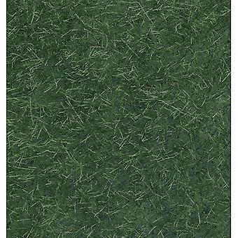 NOCH 07106 Grasslands Dark green