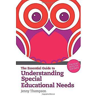 Den viktigaste vägledningen för att förstå särskilda pedagogiska behov
