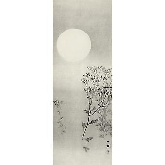 Autumn Grasses Under The Moon Kunstdruck Mori Ippo Papier 250 gr. matt Kleinformat