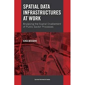 Spatial Data Infrastructures at Work - Analysing the Spatial Enablemen