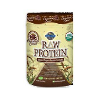 Garden of Life RAW Organic Protein Powder, Chocolate Cacao 650 g