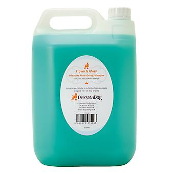 DezynaDog Crown & Glory Intensive Nourishing Shampoo 5L - Aids Coat Growth