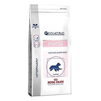 Royal Canin Starter Medium (Dogs , Dog Food , Dry Food , Veterinary diet)