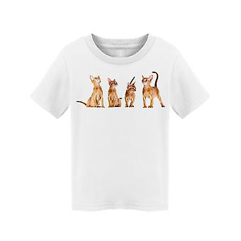 Abyssinian Kittens In A Row Tee Toddler's -Image by Shutterstock
