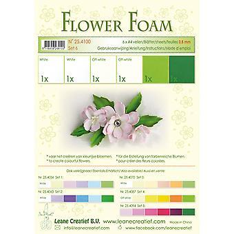 Leane Creatief Flower Foam A4 Set 6 White-Green