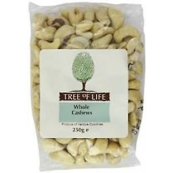 Tree Of Life - Organic Cashew Nuts - Whole 250g x 6