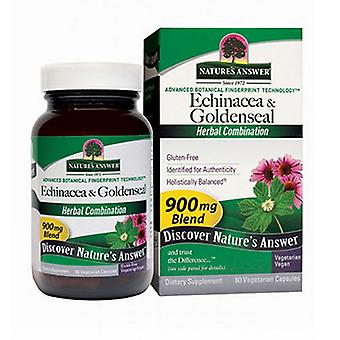 Nature's Antwoord Echinacea-Goldenseal, 60 Vcaps