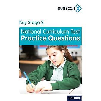 Numicon: Avainvaiheen 2 kansallisen opetussuunnitelman testiharjoittelukysymykset