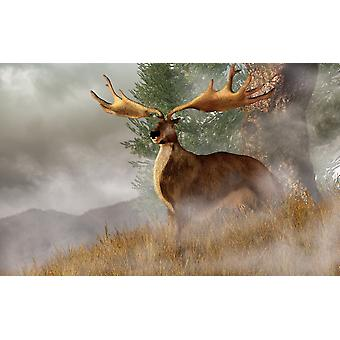 Megaloceros giganteus commonly called the Irish Elk stands in deep grass on a foggy hillside His huge antlers span over half the width of the image as he looks out of the past right at you Poster Prin