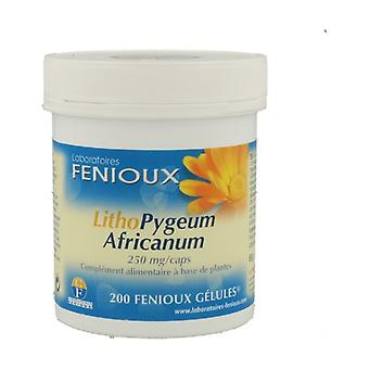 LithoPygeum Africanum 200 capsules of 250mg