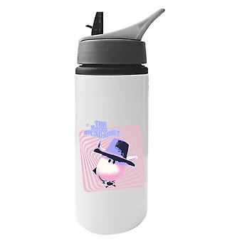 The Magic Roundabout Ermintrude Psychedelic Lines Aluminium Water Bottle With Straw
