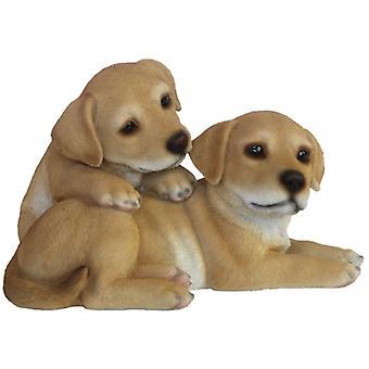 puppies 25.7 x 23.9 cm polyresin brown