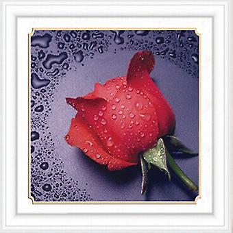 Aiguille diamant Eau Rose Rouge Violet Point de Croix Point de Croix 5d