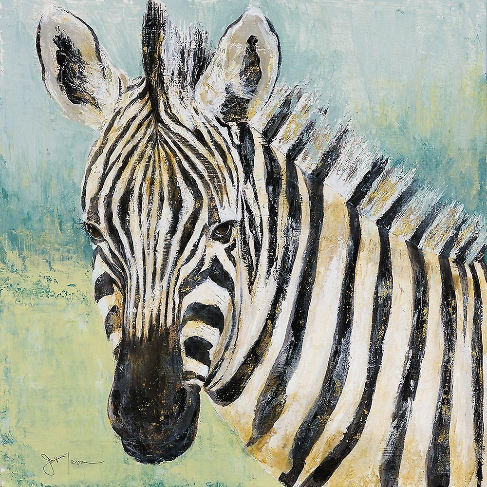 одна постеры зебра фото появляются болячки