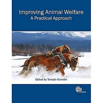 Amélioration de bien-être Animal: Une approche pratique