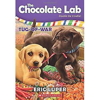 Souque à la corde (laboratoire de chocolat)