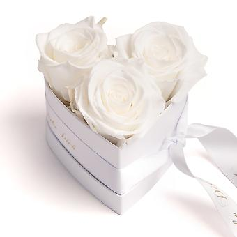 I Love You Gift Flowers 3 Eternal Roses Beige