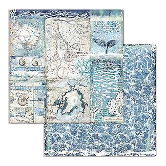Stamperia Arctic Antarctic Shells 12x12 Inch Paper Sheets (10pcs) (SBB731)