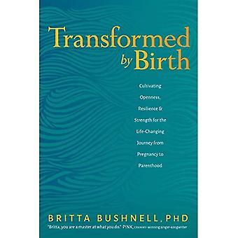 Getransformeerd door geboorte: Het cultiveren van openheid, veerkracht en kracht voor de levensveranderende reis van zwangerschap naar ouderschap