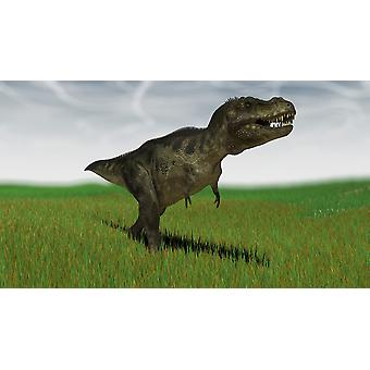 Tyrannosaurus Rex metsästystä sen seuraavan aterian nurmikentän Juliste Tulosta
