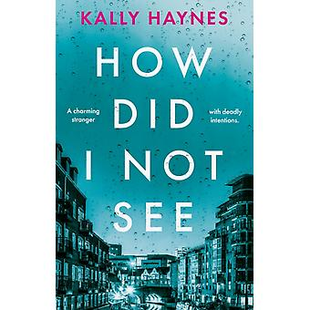 How Did I Not See by Kally Haynes