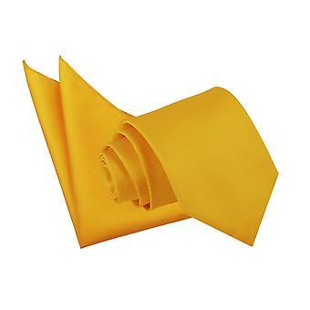 Gravata de girassol ouro sólido Check & conjunto de bolso quadrado