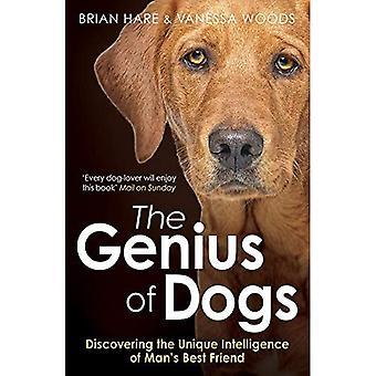 Genius koirat: löytää ainutlaatuinen älykkyyttä ihmisen paras ystävä