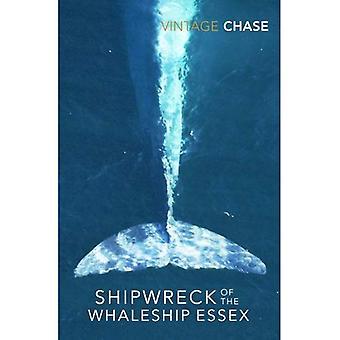 Naufragio della Whaleship Essex: La vera storia che ha ispirato il film nel cuore del mare