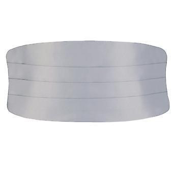Doball Boys zilveren Cummerbund aanpasbaar aan taille Tuxedo bruiloft accessoire