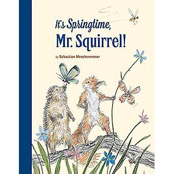It's Springtime - Mr. Squirrel by Sebastian Meschenmoser - 9780735843