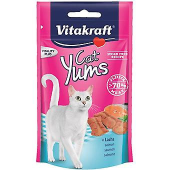 Vitakraft Cat Yums Salmon (Cats , Treats , Biscuits)